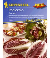 Radicchio ´Granato´,1 Portion