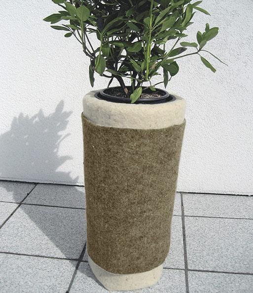 Winterschutzmatte 50cm x 2,00m Schafwolle weiß