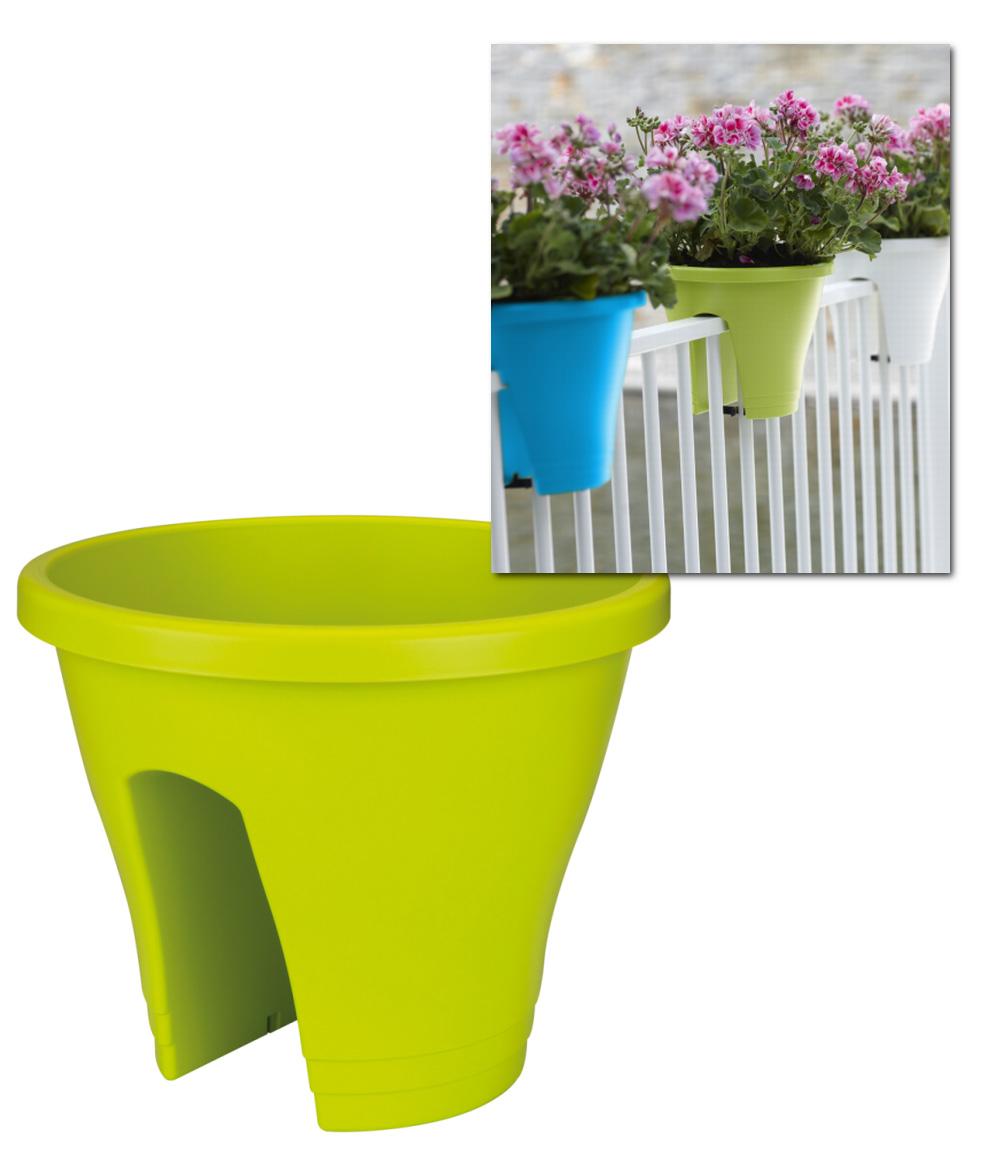 Corsica Flower Bridge® limegrün, 30 cm ø