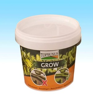 Topbuxus Grow