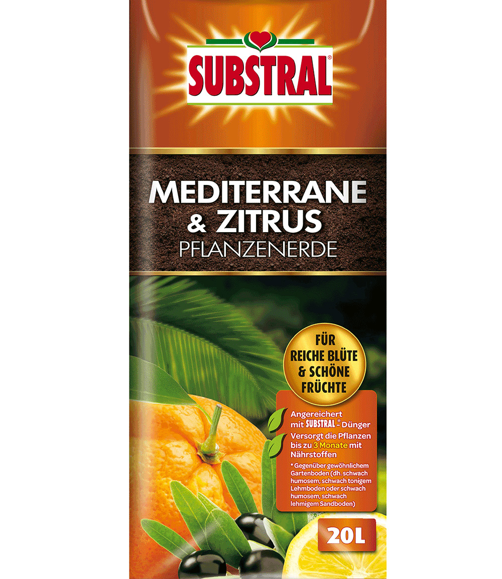 Substral® Mediterrane- & Zitruserde