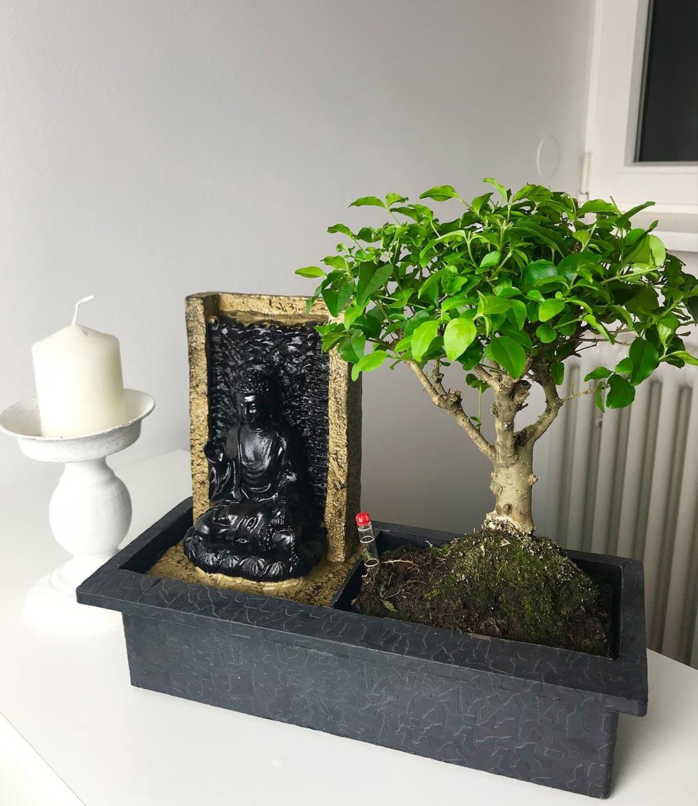 Bonsai-Baum inkl. dekorativem Buddha-Wasserfall