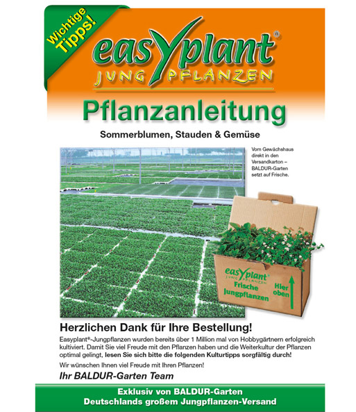 Easyplant-Pflanzanleitung