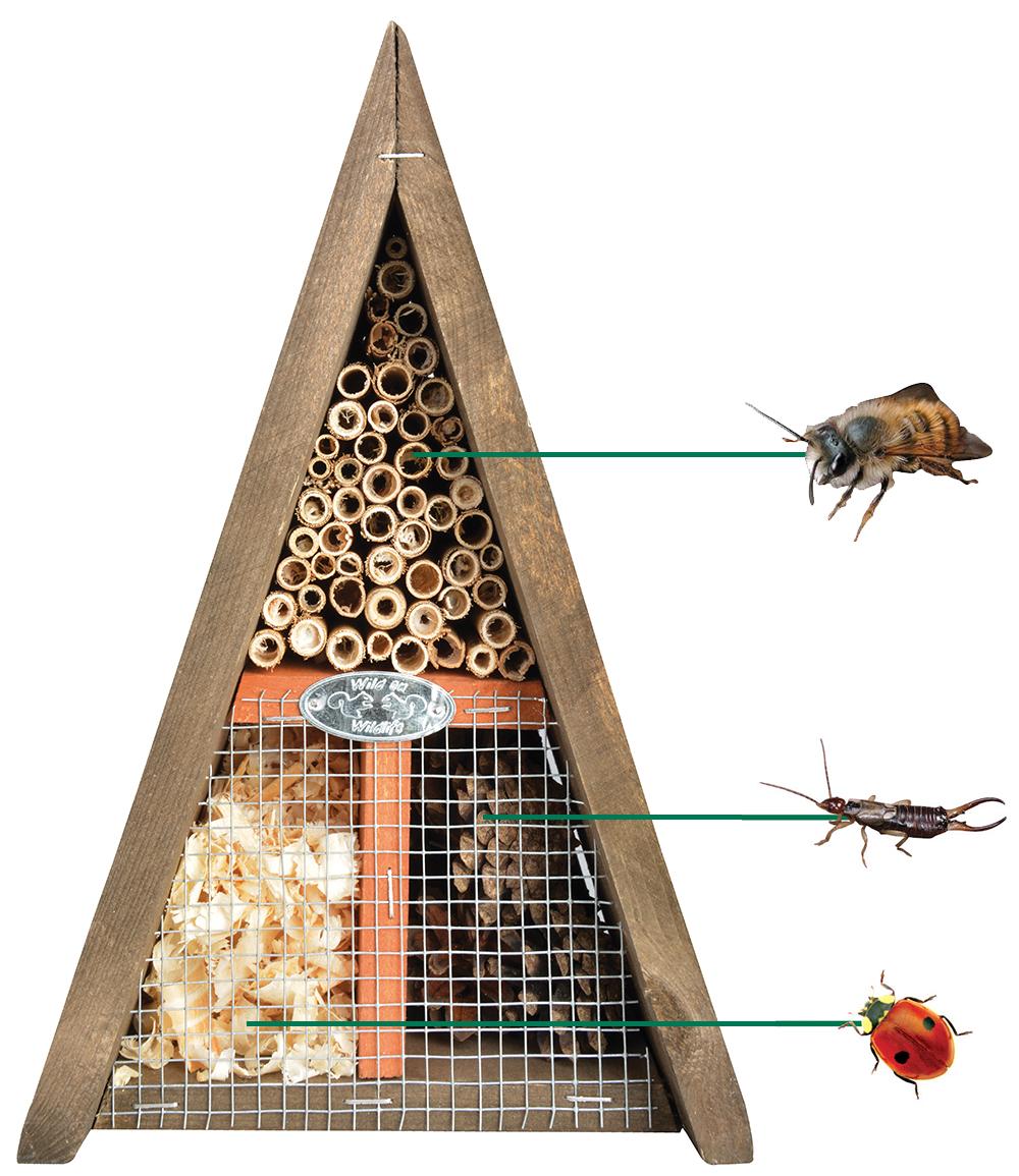 Bienen- & Insektenhaus dreieckig 19x17x28 cm