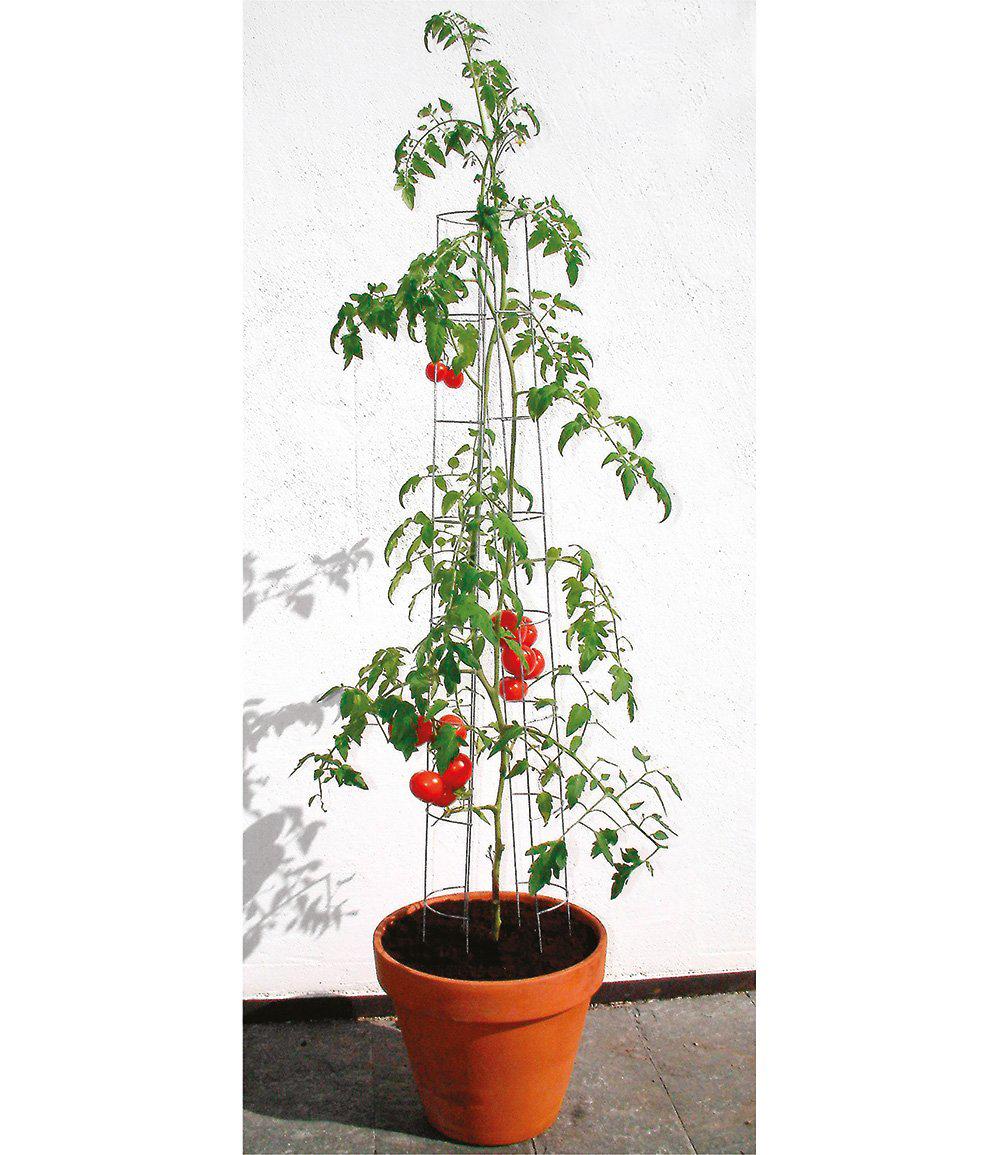 Tomatenturm 120 cm