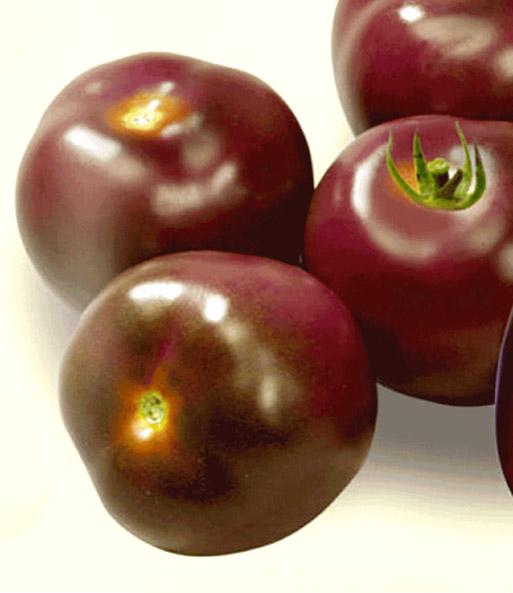 Tomate 39 noire de crim e 39 tomatensamen bei baldur garten - Noir de crimee ...