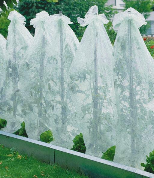 tomaten vlieshauben 5 m jetzt online kaufen baldur garten. Black Bedroom Furniture Sets. Home Design Ideas