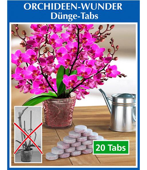 d ngemittel tabs f r orchideen blumend nger bei baldur. Black Bedroom Furniture Sets. Home Design Ideas