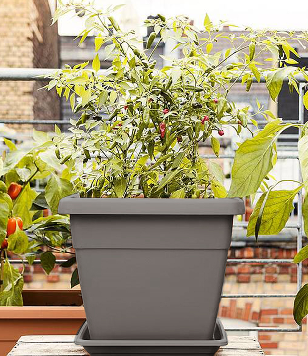 EMSA® 'My City Garden' Blumenkübel granit eckig 35x35x30 cm