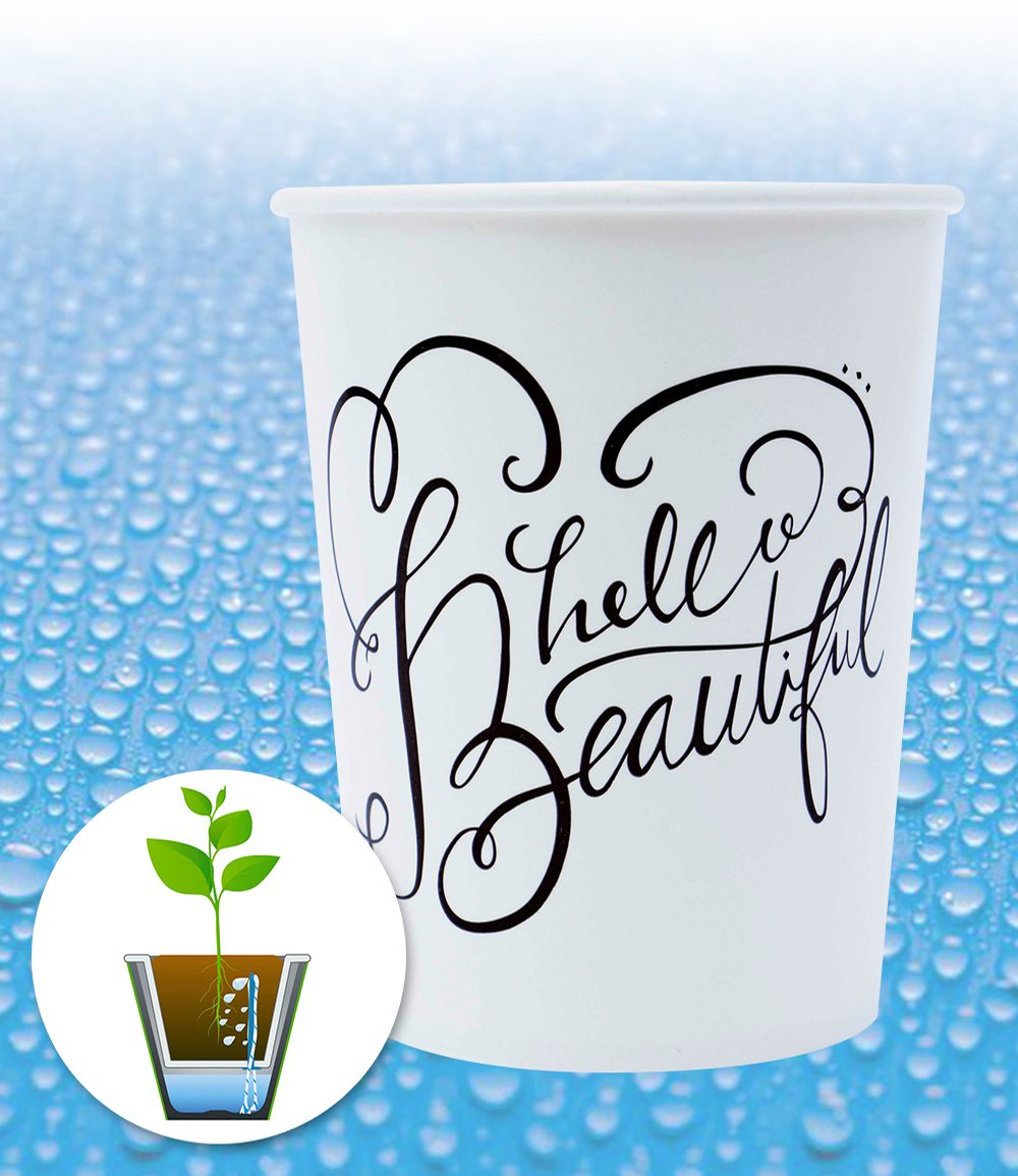 WaterWick® Topfsystem 'Hello Beautiful'