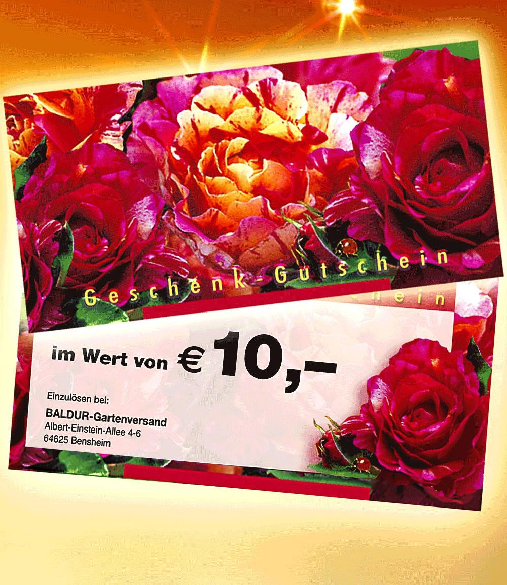 Geschenk-Gutschein im Wert von 10,- EUR