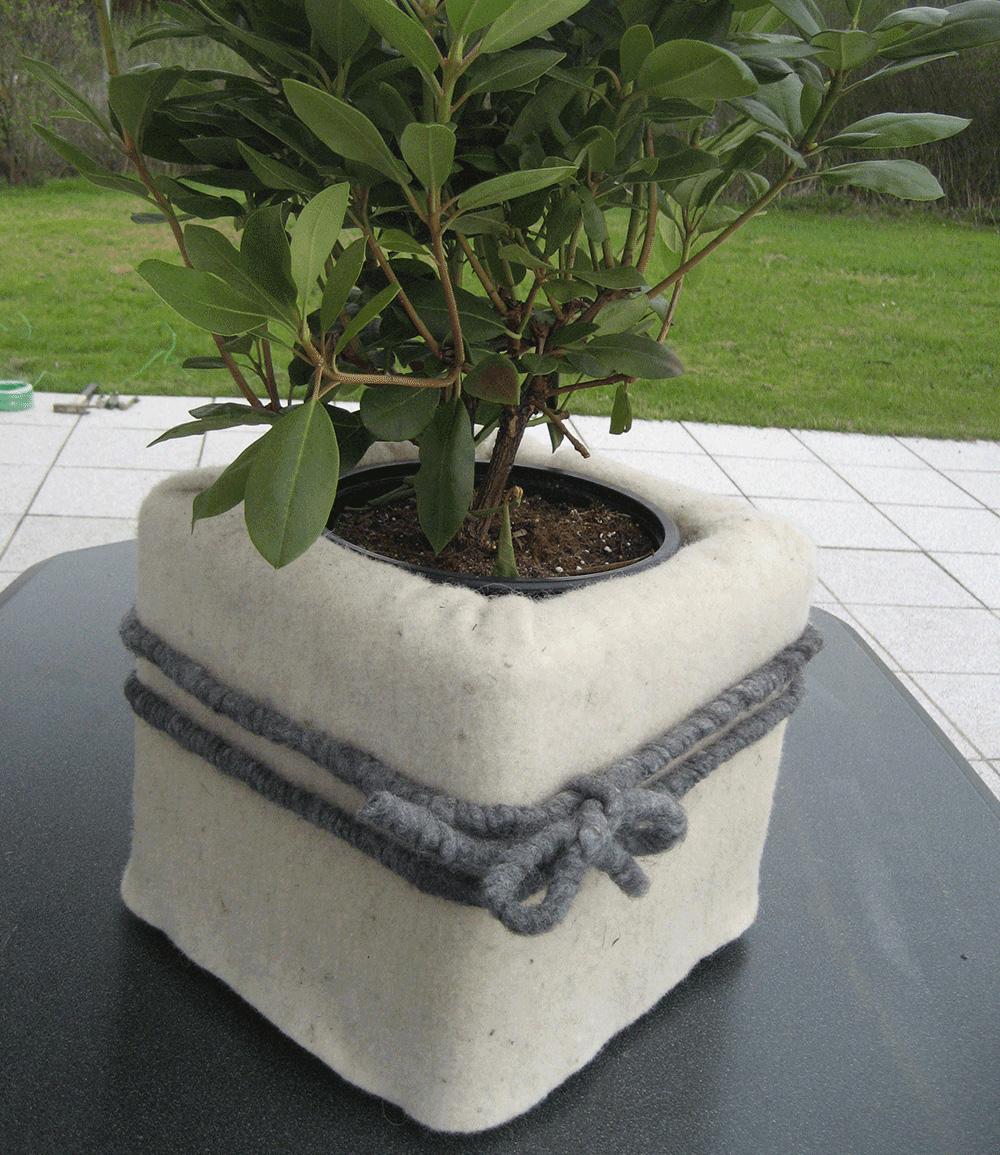 Winterschutzmatte aus Schafwolle 'naturweiß' 200x50 cm