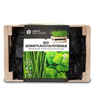 Mini-Garten BIO-Schnittlauch & BIO-Petersilie,1 Kiste jetzt billiger kaufen