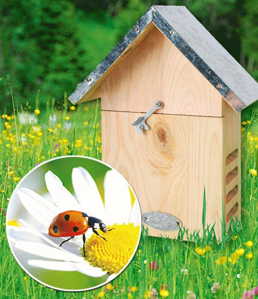 marienk fer hotel beetle 23x18x10 c insektenhotel bei. Black Bedroom Furniture Sets. Home Design Ideas