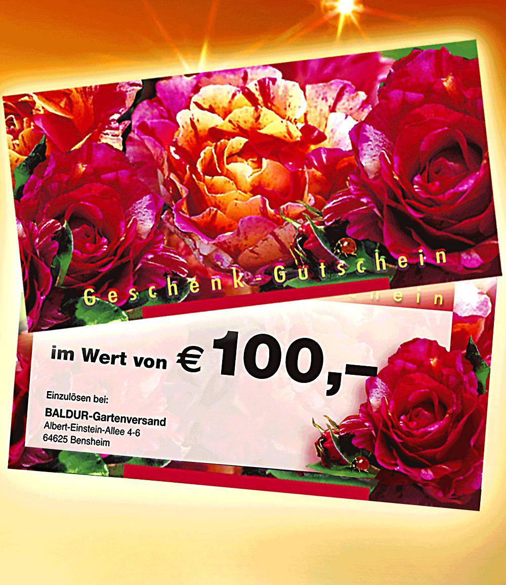 Geschenk-Gutschein im Wert von 100,- EUR