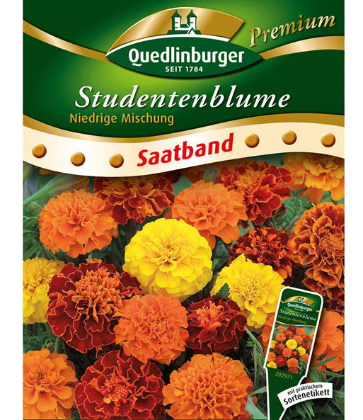 39 niedrige studentenblume 39 saatband saatband blumen bei baldur garten. Black Bedroom Furniture Sets. Home Design Ideas