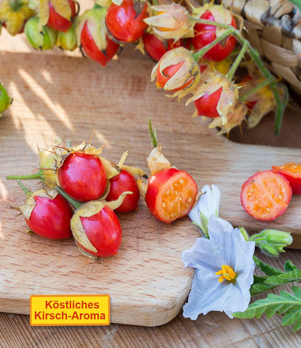 Litschi-Tomate 'StarBenas®'