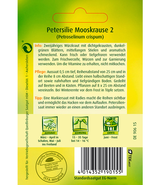 Petersilie Mooskrause 2