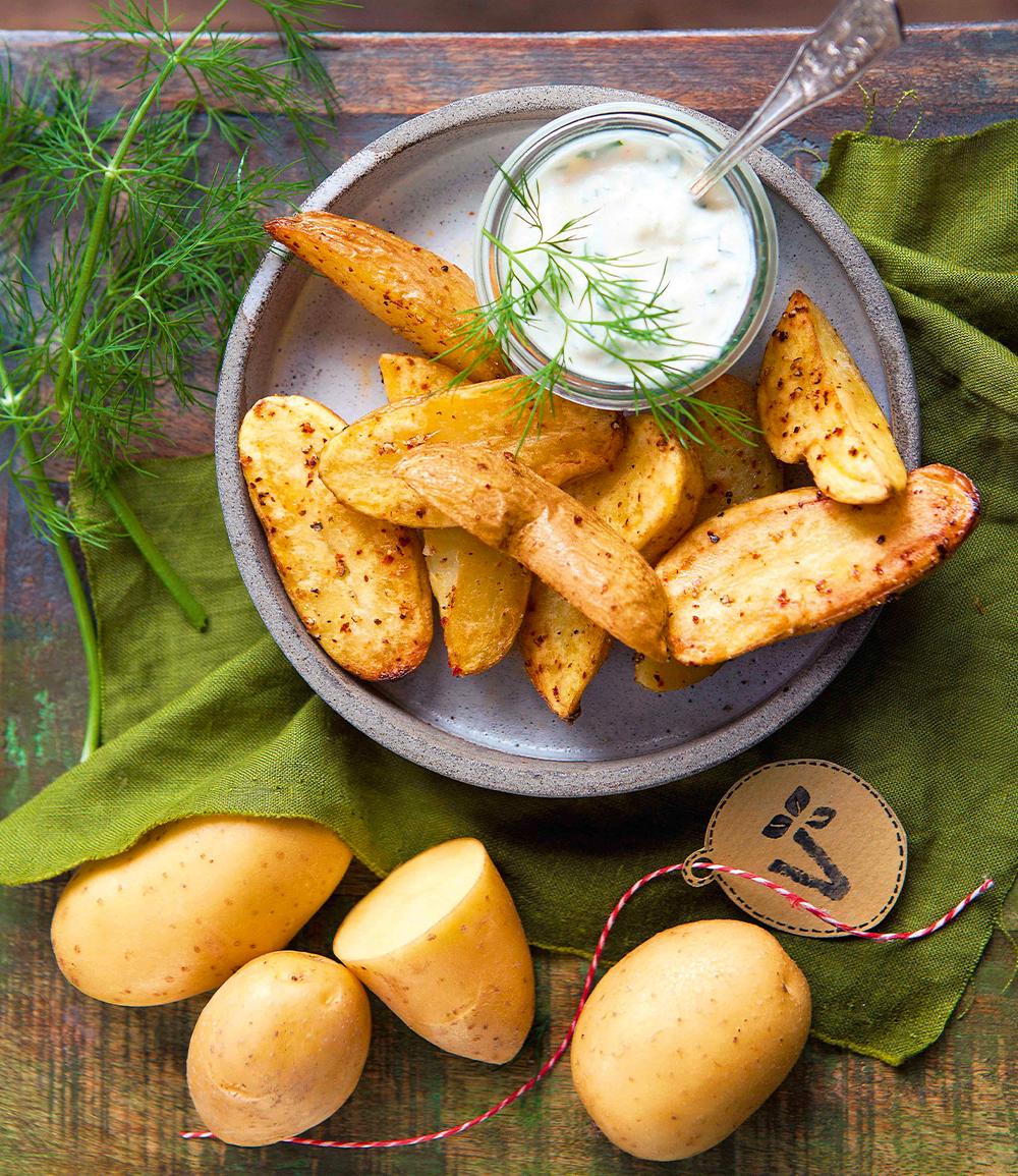 Kartoffel-Pflanze 'Adessa®' F1 im Topf