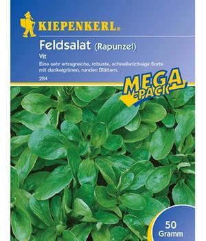 Feldsalat ´Vit´,50 g