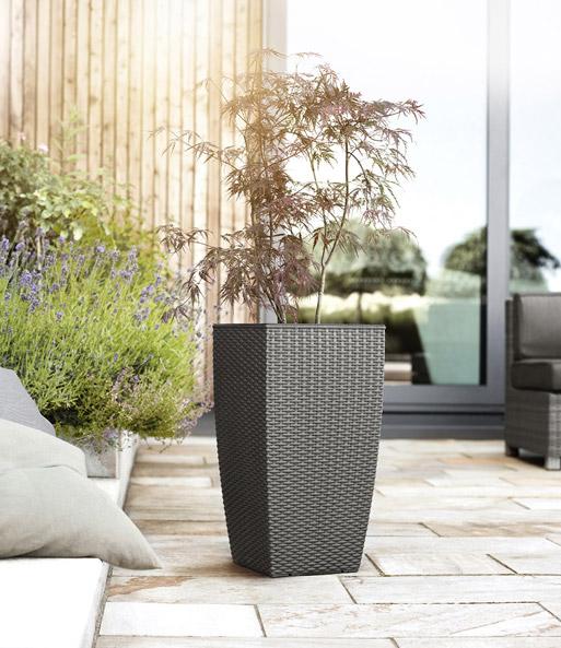 emsa casa mesh s ule 58 cm hoch 39 gr zitruspflanzen bei. Black Bedroom Furniture Sets. Home Design Ideas