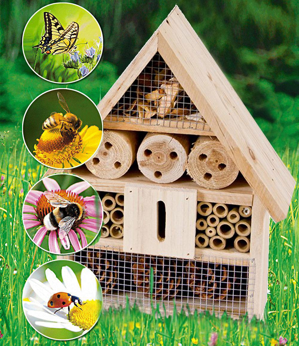 Bienen- & Insektenhaus