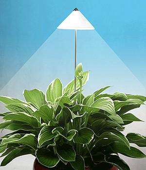 LED Wachstumslampe fürs Zimmer ´weiß´,1 Stück