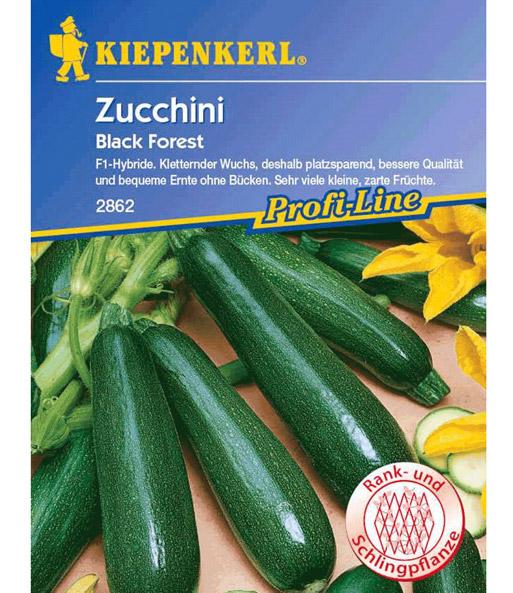 kletter zucchini 39 black forest 39 f1 zucchini samen bei baldur garten. Black Bedroom Furniture Sets. Home Design Ideas