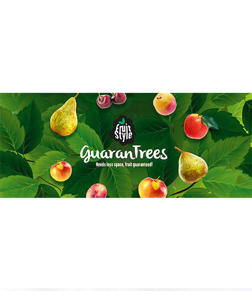 Guaran Trees® Birne 'Conference'
