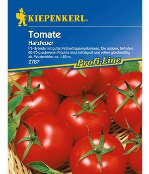 Tomaten  - Harzfeuer -  F1,1 Portion
