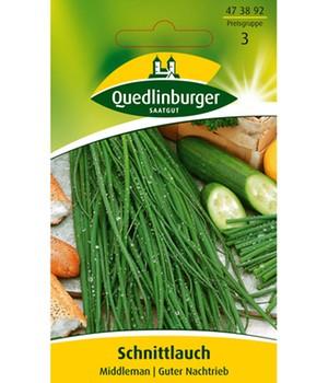 Schnittlauch  - Middleman - , mehrjährig,1 Portion
