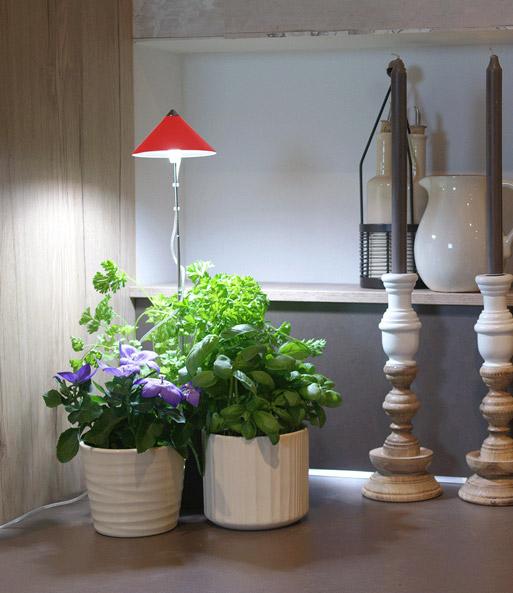 led wachstumslampe f rs zimmer 39 rot zubeh r bei baldur. Black Bedroom Furniture Sets. Home Design Ideas