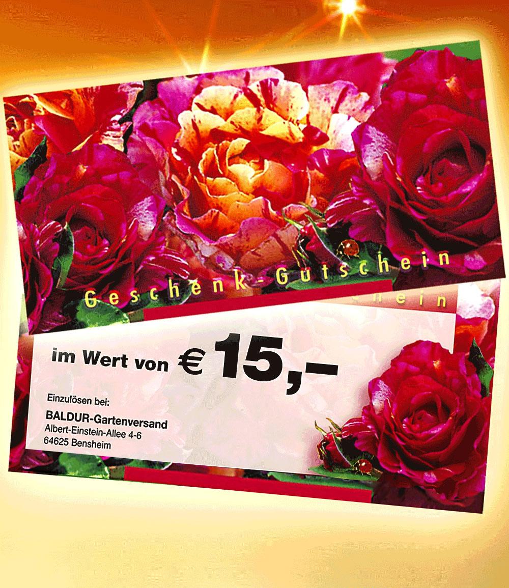 Geschenk-Gutschein im Wert von 15,- EUR