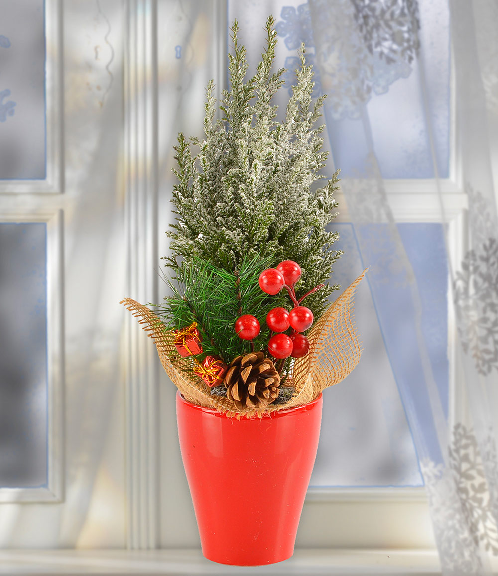 Mini-Weihnachtsbaum mit Schnee im Keramik-Übertopf