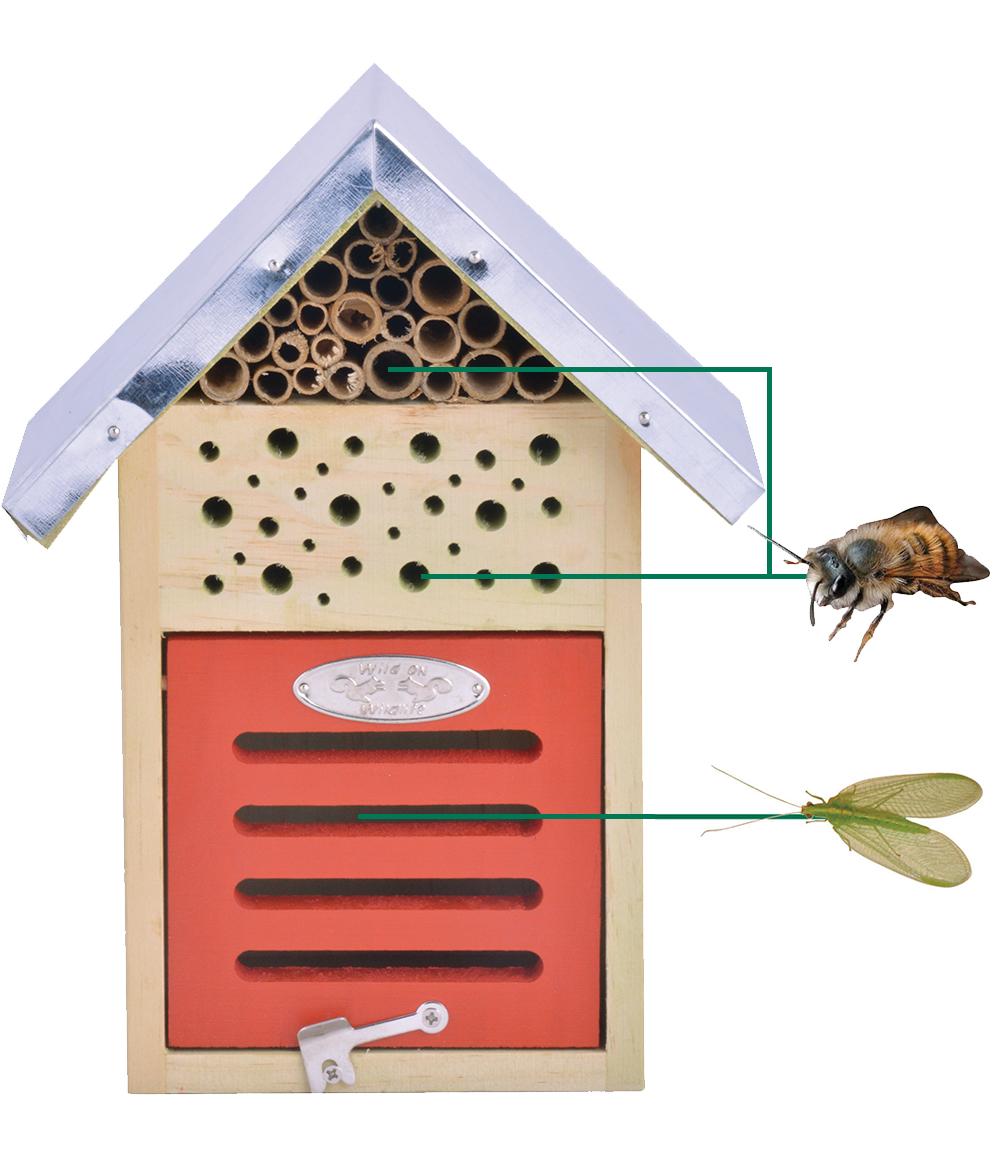Bienen- & Insektenhaus 18x15x24 cm