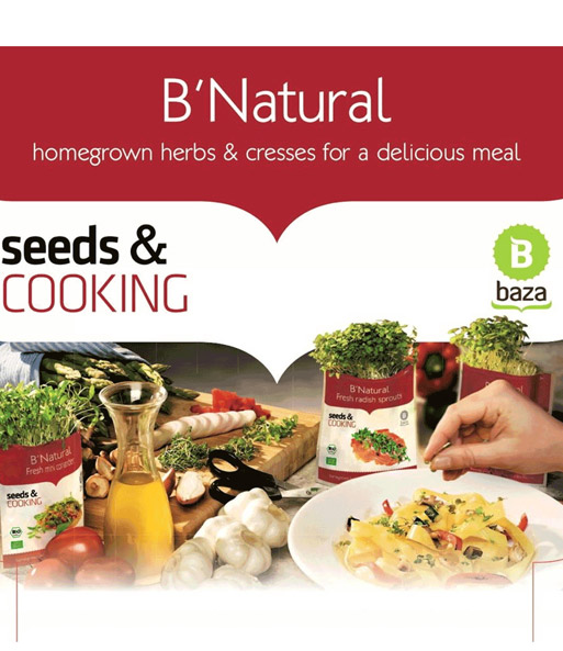 Seeds & Cooking BIO-Senfkraut Kresse