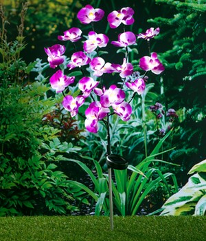 Solar Gartenstecker Orchidee