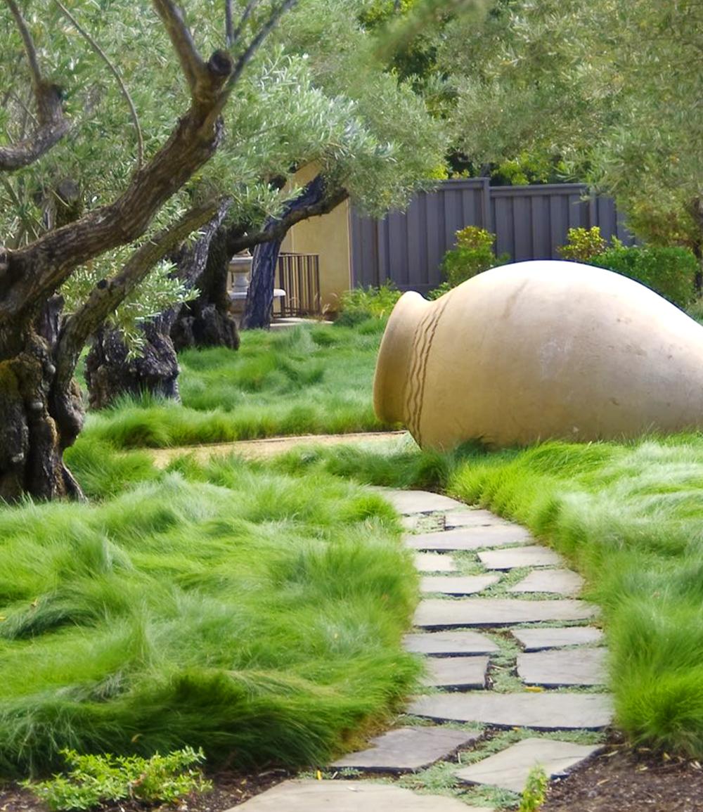 Gräser-Teppich 'Carex Remota'