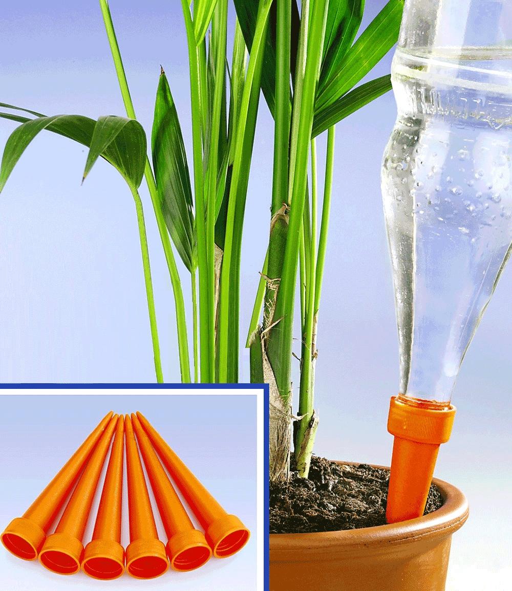 Bewässerungs-Spikes