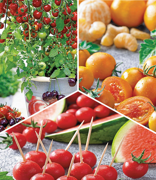 tomaten tutti frutti kollektion snackgem se bei baldur. Black Bedroom Furniture Sets. Home Design Ideas