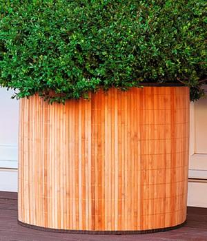 Bambusdeko- & Frostschutzmanschette  - naturhell -  65x60 Zentimeter,1 Stück
